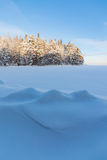 Frozen lake shore and snow covered forest Stock Photos