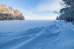 Frozen lake shore and snow covered forest Stock Photo