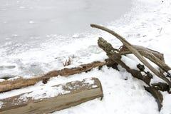 Frozen lake shore Royalty Free Stock Photo
