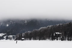 Frozen lake in Slovenia. Frozen lake Bohinj in Slovenia, winter time Royalty Free Stock Photo
