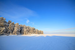 Frozen lake and snow covered forest Stock Photos