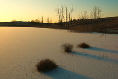 Frozen lake. Frozen and snow covered lake during sunset Royalty Free Stock Image