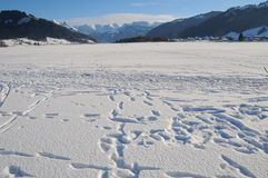 Frozen lake, snow and mountains. Frozen lake in Switzerland surrounded by mountains Royalty Free Stock Photography