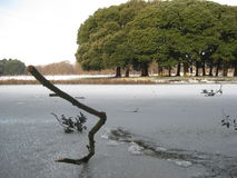Frozen lake, snow, phoenix park, dublin, ireland, winter Stock Photos