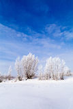 Frozen lake with snow Stock Images