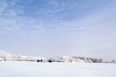 Frozen lake with snow stock photography