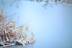 Frozen lake with snow - silent calmness. Stock Images