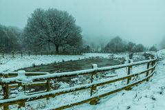 Frozen lake snowfall Royalty Free Stock Photo