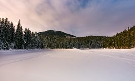 Frozen lake in snowy forest Royalty Free Stock Image