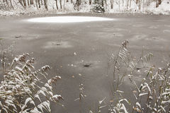 Frozen lake surface. Royalty Free Stock Photography