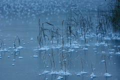 Frozen lake Royalty Free Stock Photos