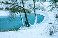 Frozen lake and trees Royalty Free Stock Image