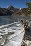 Frozen Lake with a Trunk. Frozen lake in the Spanish Pyrenees Stock Photo