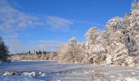 Frozen lake in the winter. A frozen lake in a sunny winter day Stock Photography