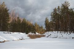 Frozen lake in winter in the forest stock image