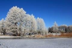 Frozen lake in winter, Mazury, Poland Stock Photography