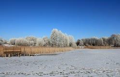Frozen lake in winter, Mazury, Poland Royalty Free Stock Photos