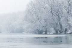 Frozen lake in winter, Winter lake scene. Nature stock image