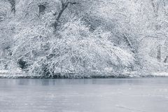 Frozen lake in winter, Winter lake scene. Nature stock photo