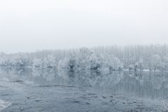 Frozen lake in winter, Winter lake scene reflecting in the water. Nature royalty free stock images