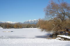 Frozen Lake in winter Stock Photography