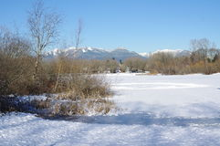 Frozen Lake in winter Stock Images