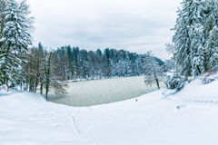 Frozen lake in Zagorje, Croatia Stock Image