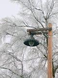 Frozen lamp Royalty Free Stock Photos