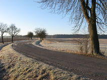 Frozen land. First strong frost in winter Royalty Free Stock Images