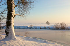 Frozen landcape. A sunny winter day in Dutch landscape Stock Images