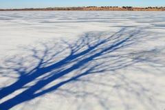 Frozen landscape background Stock Photos