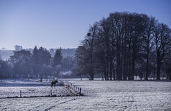 Frozen Landscape Royalty Free Stock Photography