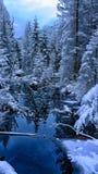 Frozen. Landscape somewhere in Poland Royalty Free Stock Photos