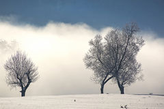 Frozen landscape in winter. Morning Royalty Free Stock Photo