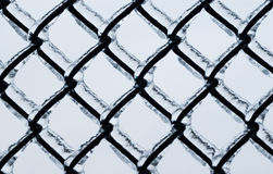 Frozen Large Chain-link Fence Pattern. Royalty Free Stock Photography