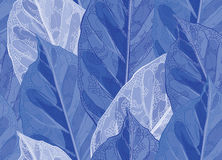 Frozen leaves  pattern. Seamless  pattern winter leaves with veins Royalty Free Stock Image