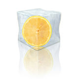 Frozen lemon Royalty Free Stock Photo