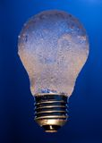 Frozen light bulb Royalty Free Stock Photo