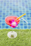 Frozen margarita with strawberry and orchid flower Stock Image