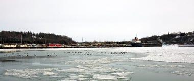 Frozen Marina Stock Image