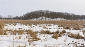 Frozen Marsh and Hills in Winter Stock Image