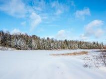 Frozen Marsh Land. Frozen marsh wetlands snow covered in winter Stock Photography
