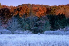 Frozen Meadow Horizantal. Frozen Meadow in Hariman State Park, NY with warm backlighting stock photo