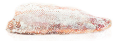 Frozen meat. Frozen fish fillet, on white stock image