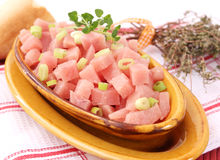Frozen Meat. Some frozen turkey meat with onions Stock Image