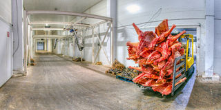 Frozen meat at a storage Stock Photography