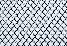 Frozen medium chain-link fence pattern. Royalty Free Stock Images
