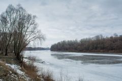 Frozen melting winter river shore with trees during february Royalty Free Stock Image