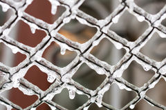 Frozen Mesh netting in the ice. cold weather concept. Stock Images