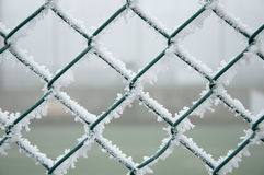 Frozen metal fence Royalty Free Stock Image